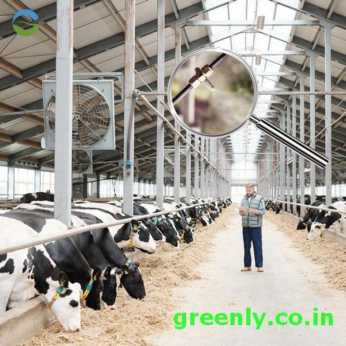 Animal livestock misting system cows horse poultry
