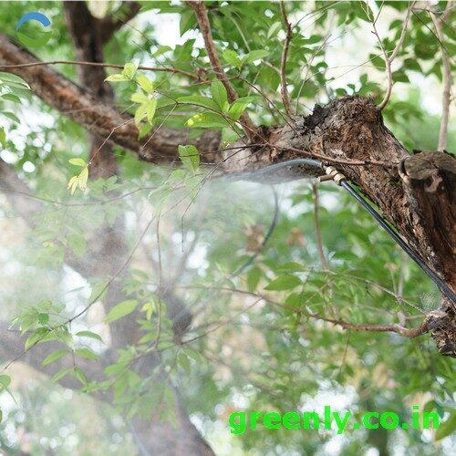 outdoor garden fogging and misting system